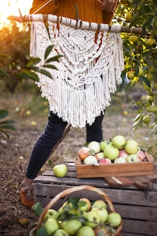 Creation of a panel from macrame. girl with macram panel in the apple orchard