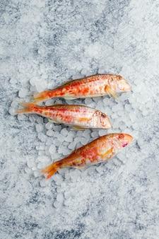 生の魚のクリエイティブなアレンジ
