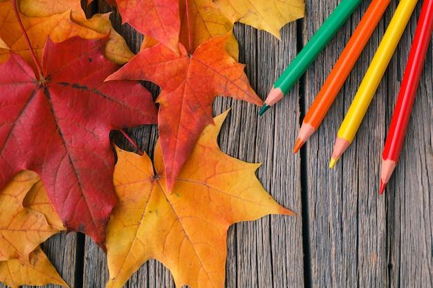 秋のカエデの葉とクリエイティブアートの背景