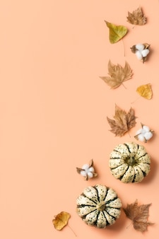 Creative autumn fall thanksgiving day composition with decorative pumpkins and dried leaves. flat lay, top view, copy space, still life coral pink background for greeting card