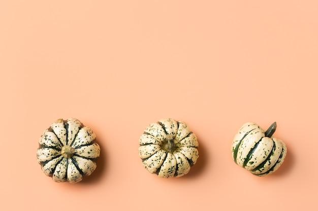 Творческий осенний осенний день благодарения композиция с декоративными тыквами. плоская планировка, вид сверху, копия пространства, натюрморт коралловый розовый фон для поздравительной открытки