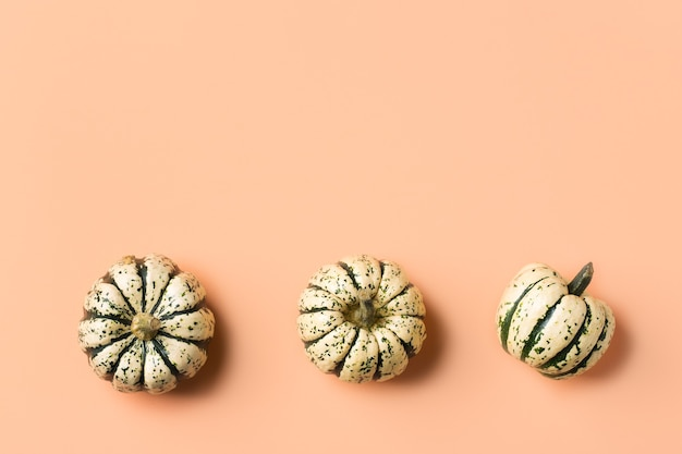 Creative autumn fall thanksgiving day composition with decorative pumpkins. flat lay, top view, copy space, still life coral pink background for greeting card