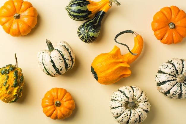 Творческий осенний осенний день благодарения композиция с декоративными тыквами. плоская планировка, вид сверху, натюрморт желтый фон для поздравительной открытки