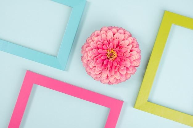 一輪の花と明るい色のフレームで作られた創造的な背景。フラットレイ上面図コピースペース。