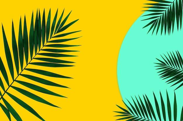 기하학적 생생한 색상 배경에 열대 잎이 있는 창의적인 배너. 광고 전단지. 초대장, 전단지 디자인. 포스터, 표지, 월페이퍼에 대한 추상적인 디자인 템플릿입니다.