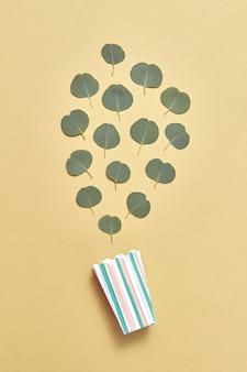 Креативная композиция из пищевой коробки и узор из вечнозеленых натуральных листьев эвкалипта на песчано-желтой стене. плоская планировка.