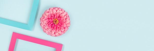 一輪の花と鮮やかな色のフレームで作られたクリエイティブな構成。フラットレイ上面図。バナー