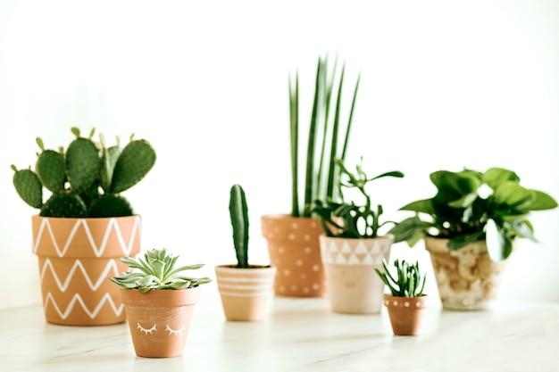植物のコピースペーステンプレートとスタイリッシュなヒップスターのインテリアデザインの創造的な構成