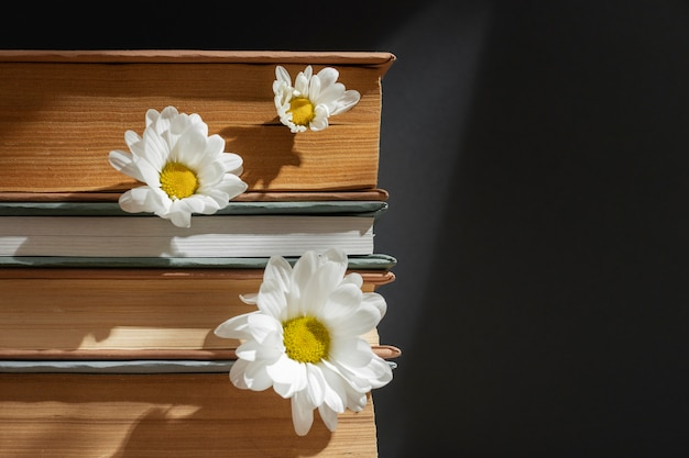 Креативная композиция с книгами и цветком