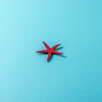 Творческая композиция с красными морскими звездами на ярком фоне.