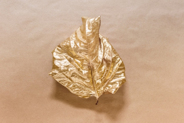 Creative composition with single one leaf dyed with golden metallic color on kraft paper surface