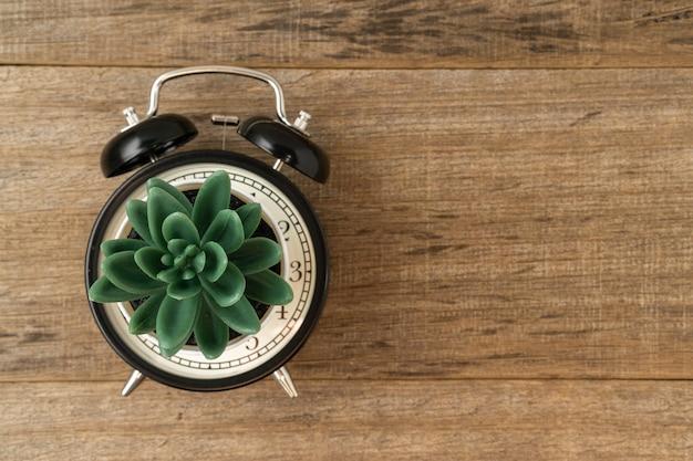 창조적 인 개념 블랙 빈티지 알람 시계와 나무 보드에 인공 식물.