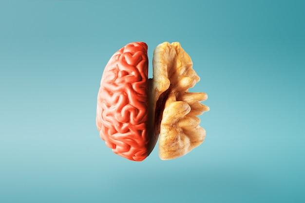 青い背景の上の健康な脳の創造的な概念。閉じる。
