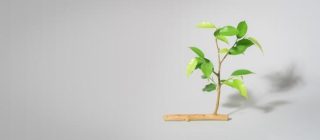 灰色の背景にエコロジーの創造的な概念。枯れた枝から生えている若い芽とその空間のコピー。