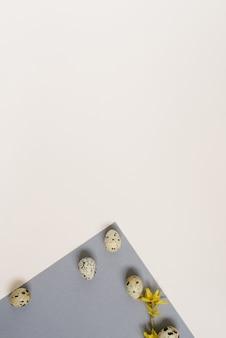 Творческий пасхальный макет перепелиных яиц на геометрическом серо-белом фоне. копировать пространство