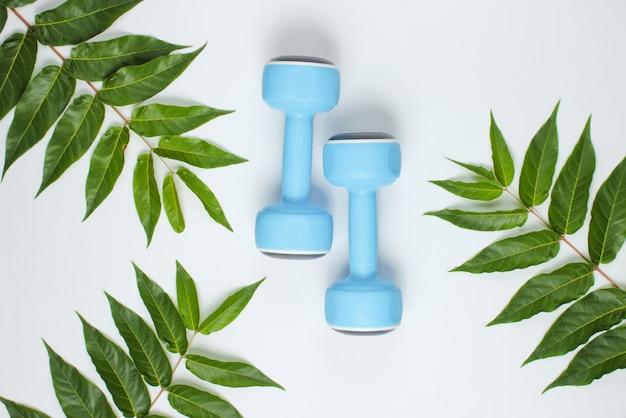 Творческий фитнес-фон. пластиковые синие гантели на белом фоне с зелеными листьями. концепция спорта.