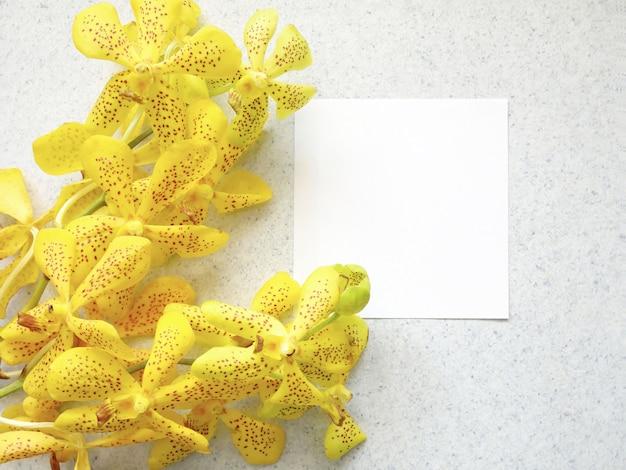 黄色の蘭の花とカードメモの創造的な平らなレイアウトのデザイン