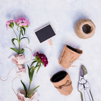 Creative flat lay gardening concept