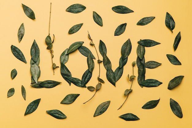 Creative flat lay of word love made with natural leaves on yellow background. love concept.