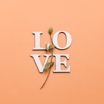 Creative flat lay of word love on soft color  background with natural plants.