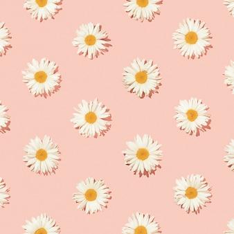 Творческий цветочный узор из цветов ромашки на розовом фоне. вид сверху.