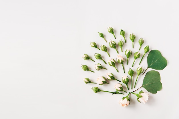 Creative flowers composition of small roses with buds and green leaves on white background
