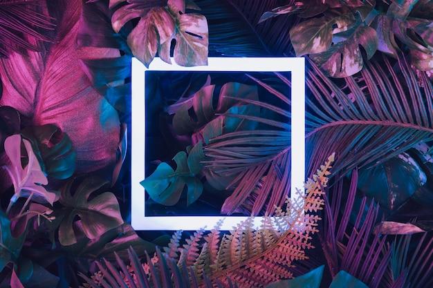 네온 라이트 스퀘어가있는 열대 잎으로 만든 크리에이티브 형광 색상 레이아웃. 자연 개념.