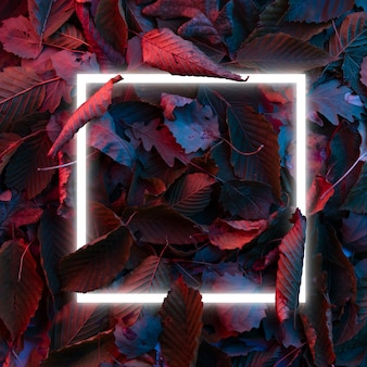 Creative fluorescent color layout made of tropical leaves. flat lay neon colors. neon light flat square frame on different leaves background in dark neon color palette. nature concept design.