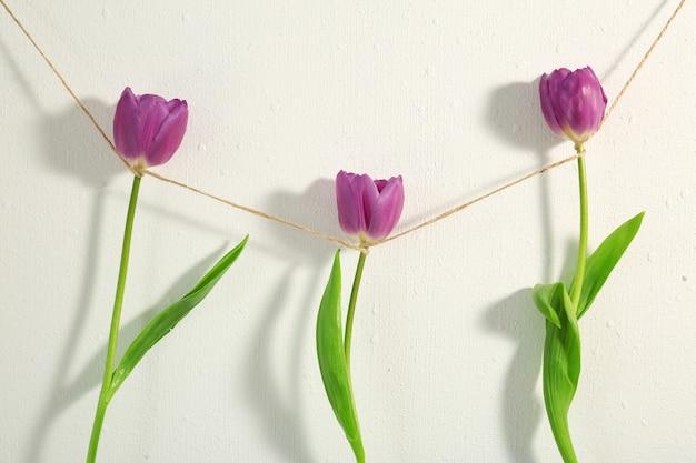 白い背景にライラックのチューリップと創造的な花輪