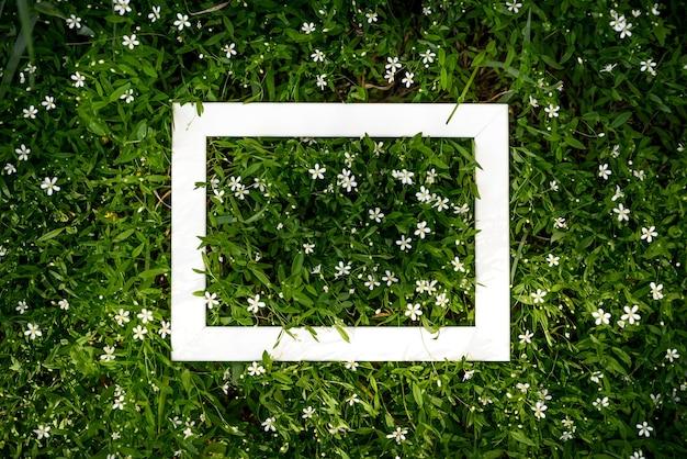 白いフレームのコピースペースと自然の葉と牧草地の草の創造的な緑の花の背景。
