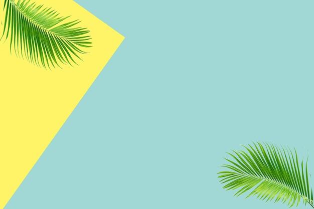 Креативные зеленые тропические пальмы с видом на плоскую планировку в пастельных тонах