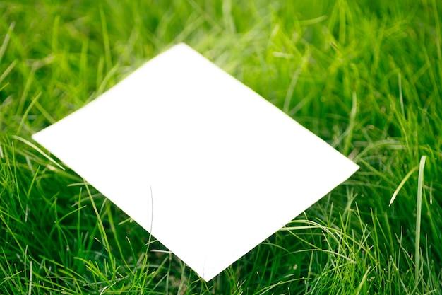 白い紙のカードノートと日光からの影、フラットレイとコピースペースと美しい質感を持つ緑の新鮮な草で作られた創造的なレイアウト構成フレーム。