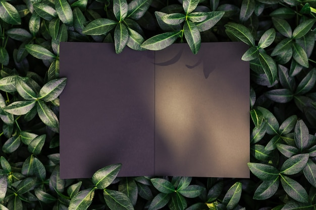 Креативная макетная композиция из листьев зеленого барвинка с красивой текстурой и черным ...
