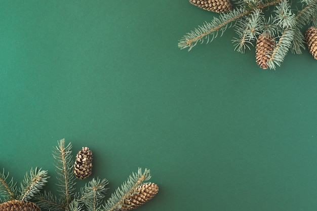 Creative layout made of christmas tree branches on green paper background. flat lay. top vew. nature new year concept.