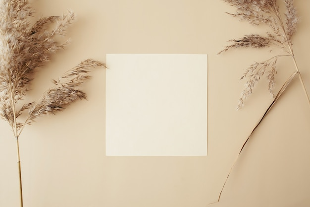 Creative layout made of dry pampas grass reeds agains and paper card note on beige background. minimal, stylish, trend concept. flat lay, top view, copy space. trend color 2021.