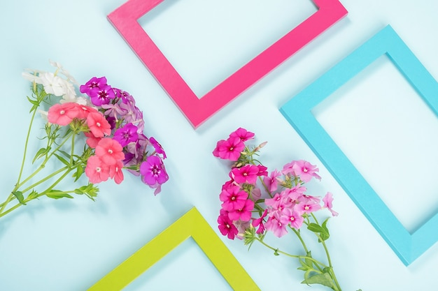 Creative layout made of flowers and bright colored frames on blue.
