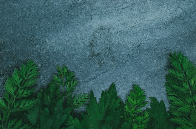 Creative layout made of forest grass on black shale