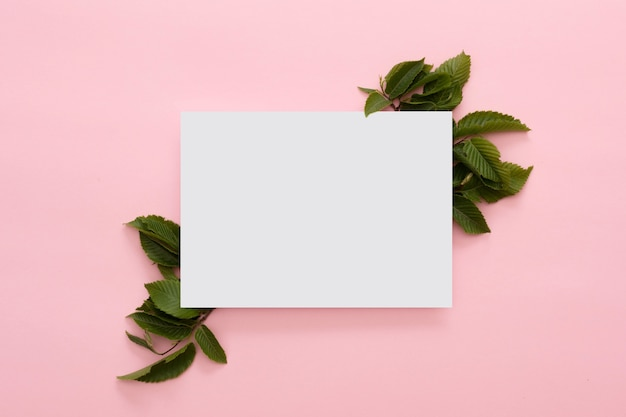 Creative layout made of green leaves with paper card on pink background