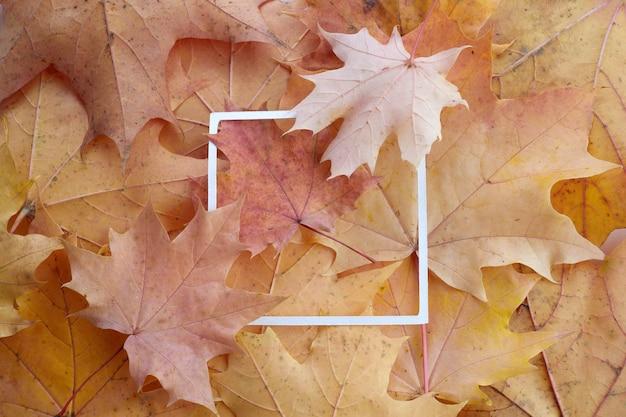가을의 화려한 잎과 백서 프레임으로 만든 창의적인 레이아웃입니다. 플랫 레이.