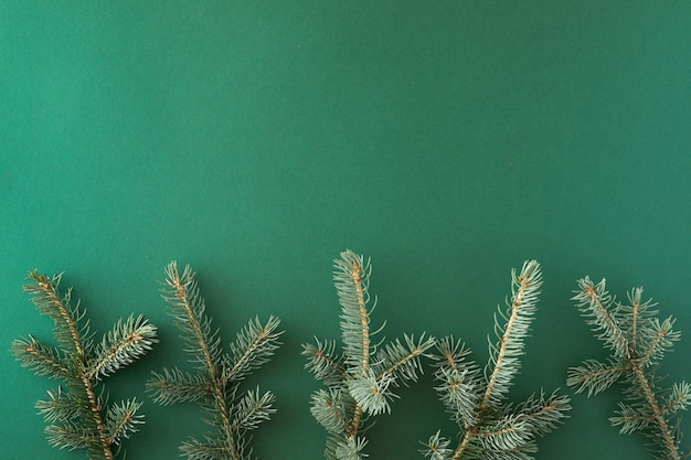 緑の紙の背景にクリスマスツリーの枝で作られた創造的なレイアウト。フラットレイ。トップビュー。自然の新年のコンセプト。