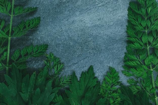 黒い頁岩の森の草で作られた創造的なレイアウト