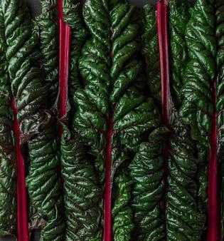 녹색과 빨간색 망골드 샐러드 잎으로 만든 창의적인 레이아웃입니다. 식물 패턴 질감, 자연 개념입니다. 평지