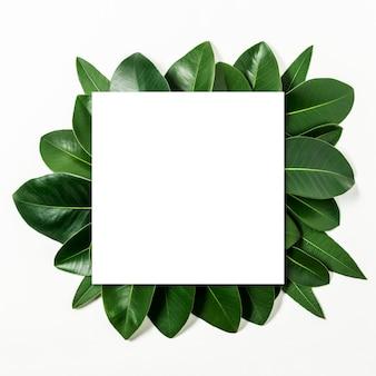 종이 카드 메모와 함께 잎으로 만든 크리 에이 티브 레이아웃