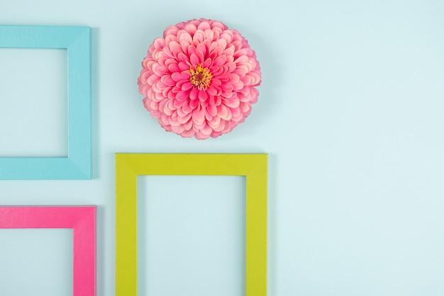 一輪の花と鮮やかな色のフレームで作られたクリエイティブなレイアウト。フラットレイ上面図コピースペース。