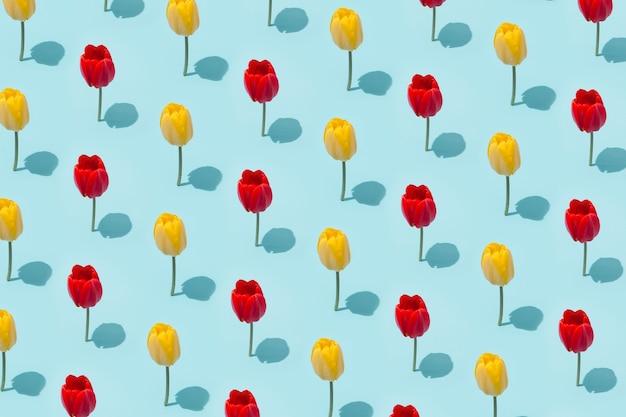 봄 튤립 꽃으로 만든 창의적인 레이아웃