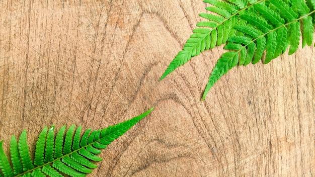 Креативный макет из тропических листьев на деревянном фоне минималистская концепция с копией пространства