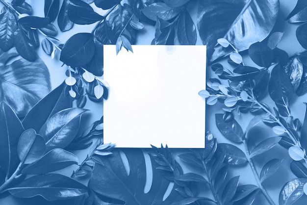 Creative layout made of tropical leaves in monochrome colors. trendy blue and calm color. flat lay. top view.