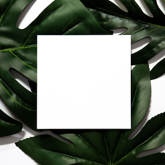Creative layout made of tropical leaves with empty white paper frame.