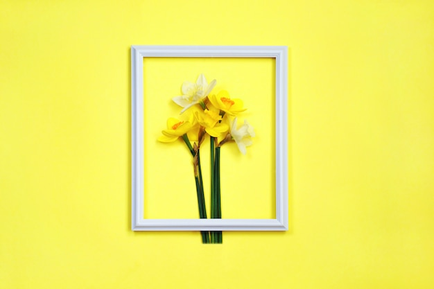 Creative layout made with daffodil and white frame