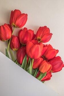 明るい白い表面にチューリップの花で作られた創造的なレイアウト